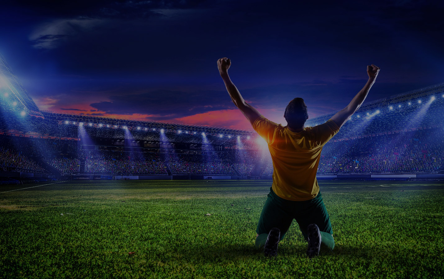 Zulu sports betting what does otb mean in sports betting